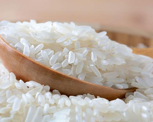 绿色大米价格