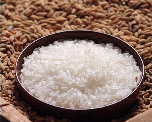 绿色大米供应商
