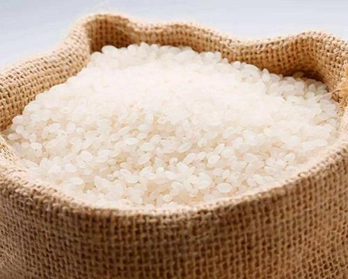 普通大米供应