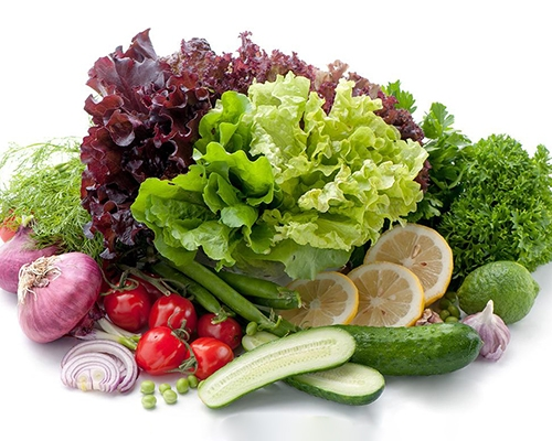 批发有机蔬菜