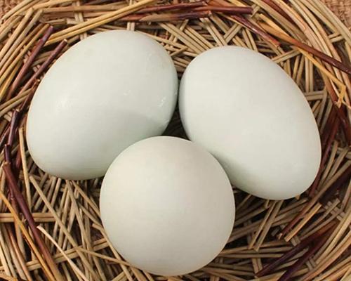 生态鸭蛋批发